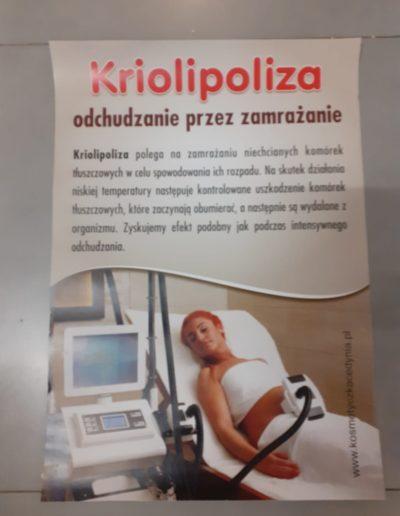 Kriolipoliza
